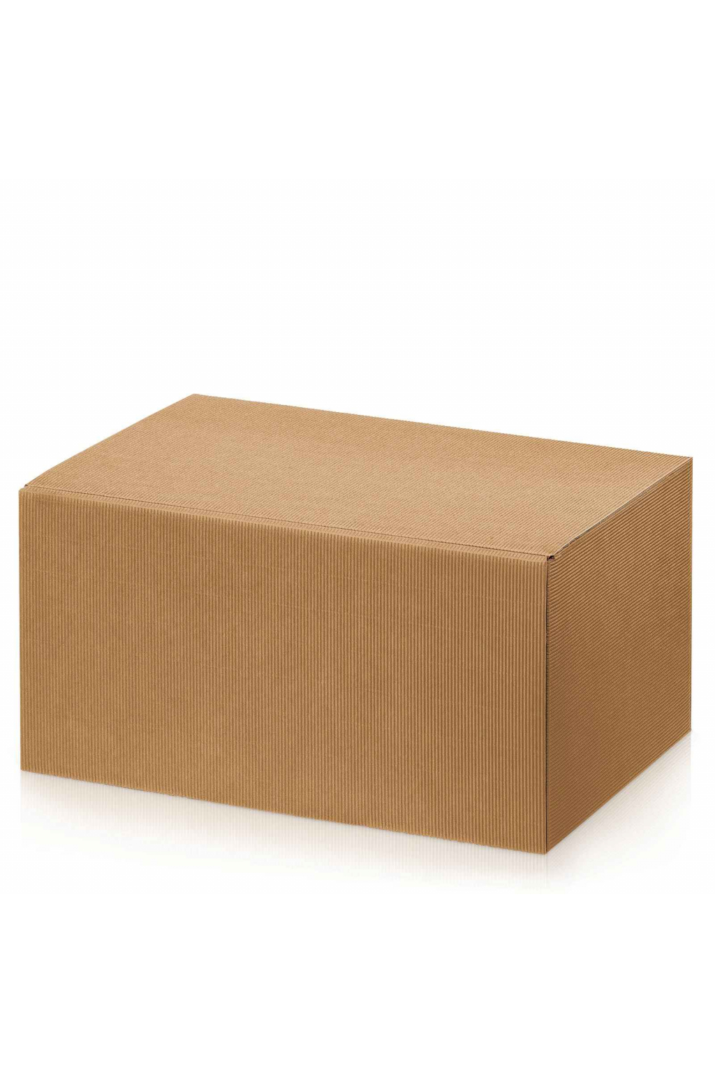 krabicka prirodni 6 lahvi web
