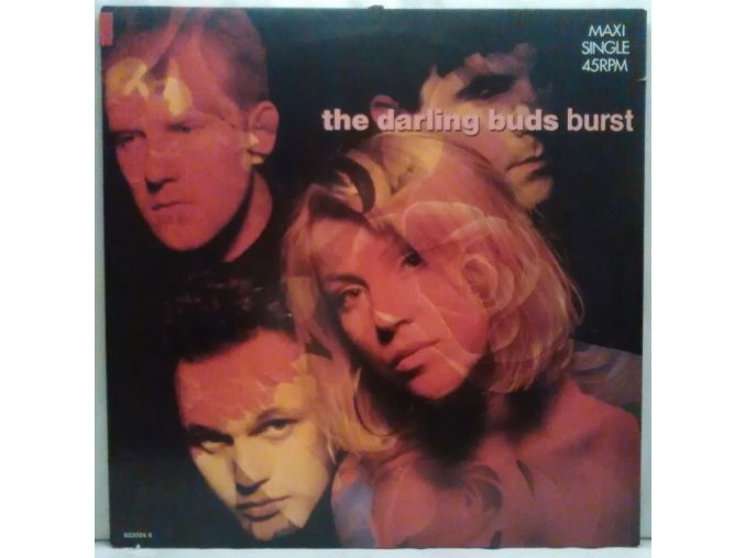 The Darling Buds ‎– Burst, 1988