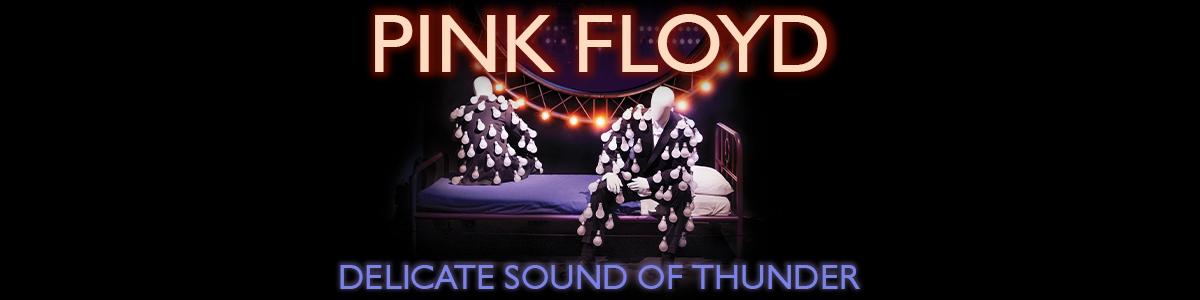 PINK FLOYD - Delicate Sound of Thunder - Novinka 2020 - ponuka Vinylo.sk