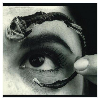 VINYLO.SK | MR. BUNGLE - DISCO VOLANTE (LP)180 GRAM AUDIOPHILE VINYL / INSERT