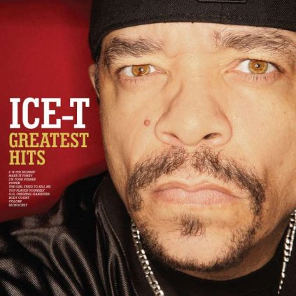 VINYLO.SK | ICE-T ♫ GREATEST HITS: THE EVIDENCE [CD] 0081227957759