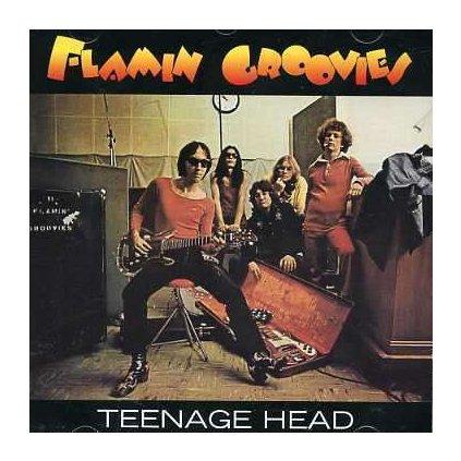 VINYLO.SK | FLAMIN' GROOVIES - TEENAGE HEAD [CD]