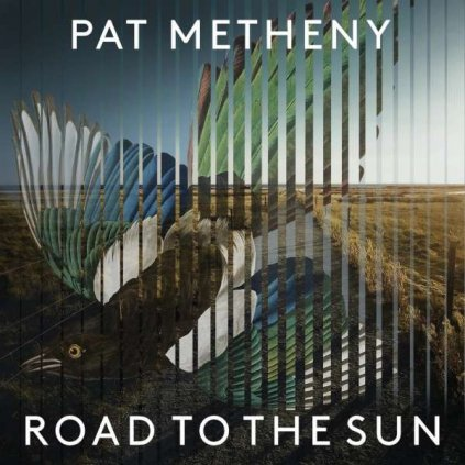 VINYLO.SK | Metheny, Pat ♫ Road To The Sun [2LP] 4050538639377