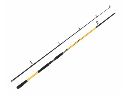 Zfish Prut Kodiak 2,40m/100-250g