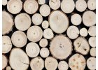Dřevěné obklady WOOD COLLECTION