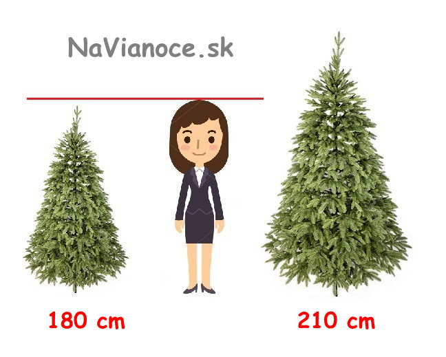 vianočný stromček a správna výška vianočných stromčekov