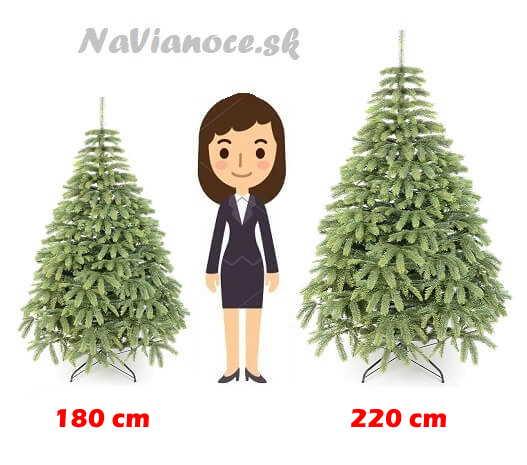 vianočný stromček najlepšia výška