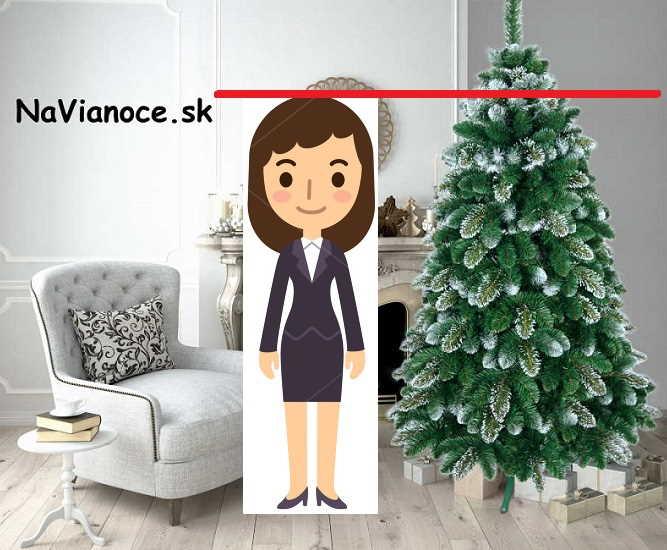 ako-vybrat-vianocny-stromcek