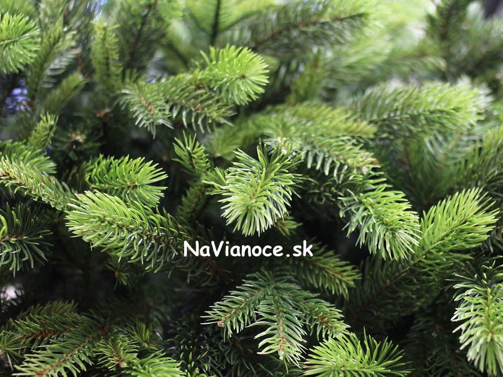 naj-predavanejsie-umele-vianocne-stromceky