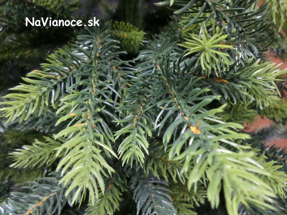 100-percent-3d-vianocne-stromceky