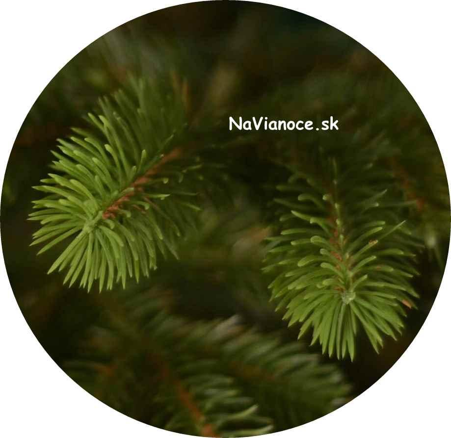 3D ihličie na vianočných stromčekoch na Vianoce