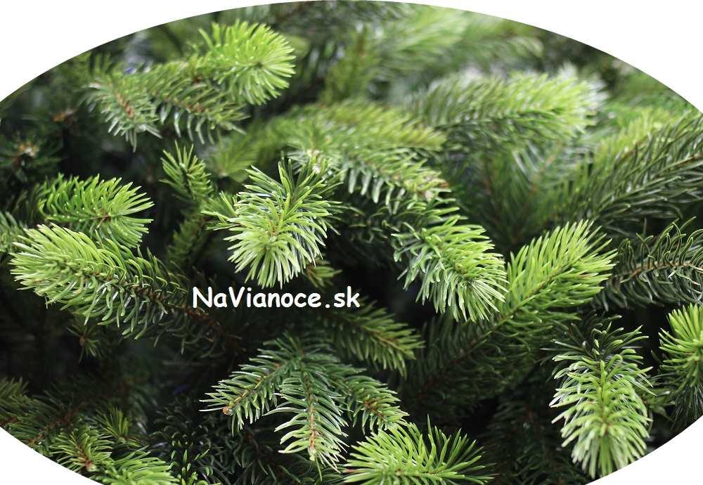 husté veľké umelé vianočné stromčeky