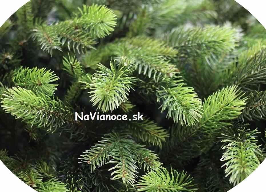 hustý moderný vysoký vianočný stromček