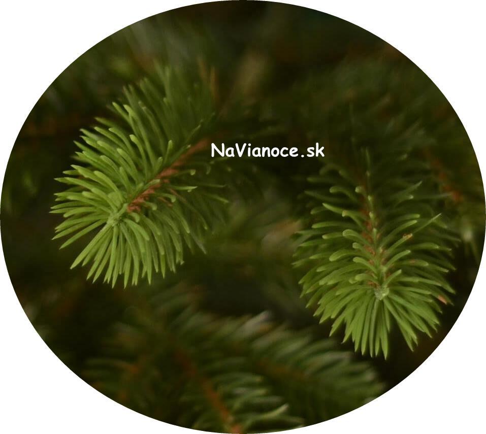 ihličie na vianočné stromčeky