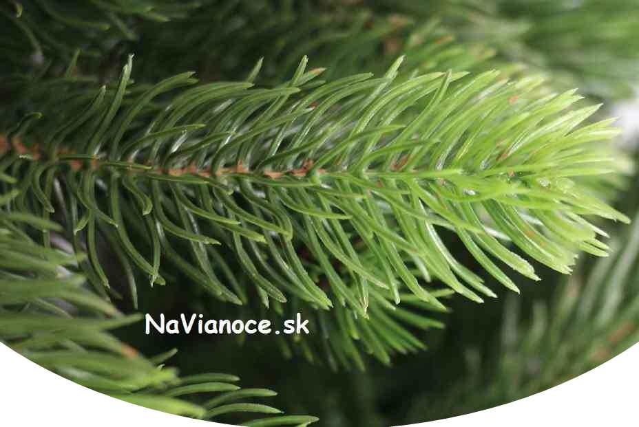 veľké široké vianočné stromčeky 3d ihličie