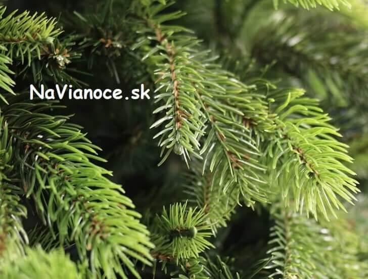 vianočný trendy hustý stromček