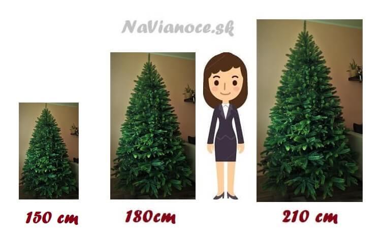 rozdiely vianočných stromčekov