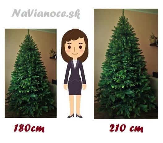 porovnanie vianočných stromčekov a ich výšky