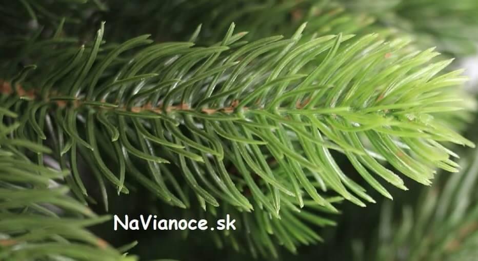 vianočný stromček ihličie 3d husté