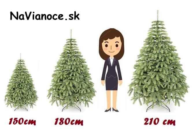 výška vianočný stromček porovnanie