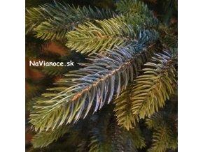vianočné stromčeky Tuje 3d ihličie