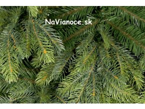 vianočný stromček reálny