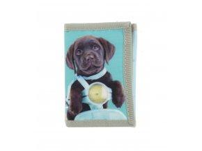 Peňaženka - Pes