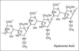 Z čeho se vyrábí kyselina hyaluronová?
