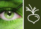 Rainforest®
