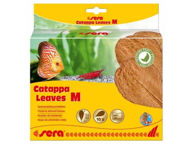 sera catappa leaves m 18 cm 10ks