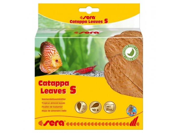 sera catappa leaves s 14 cm 10ks