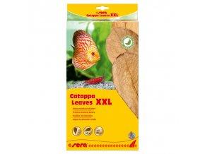 sera catappa leaves xxl 32 cm 10ks