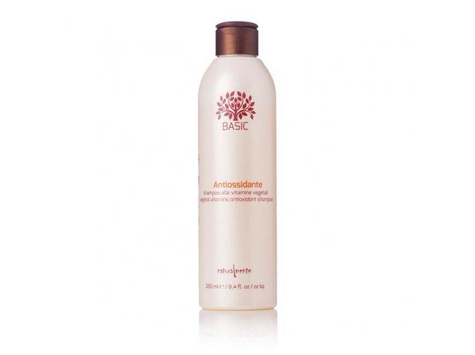 2 1 1 9 AntiOx Shampoo