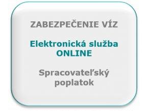 Elektronické víza