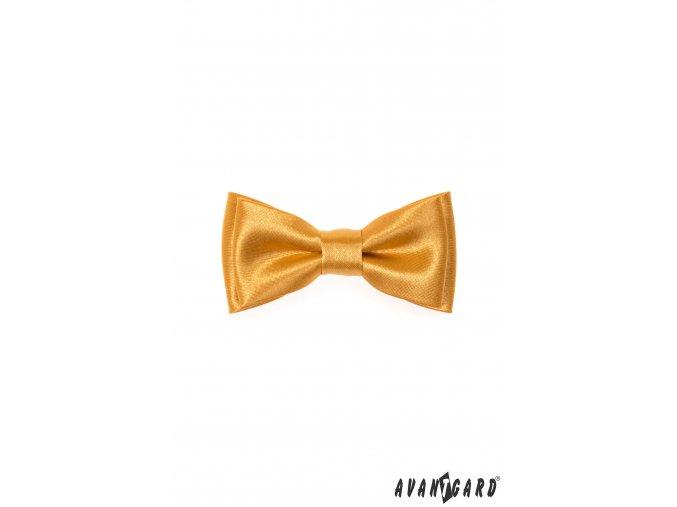 Zlatý předvázaný lesklý MINI motýlek