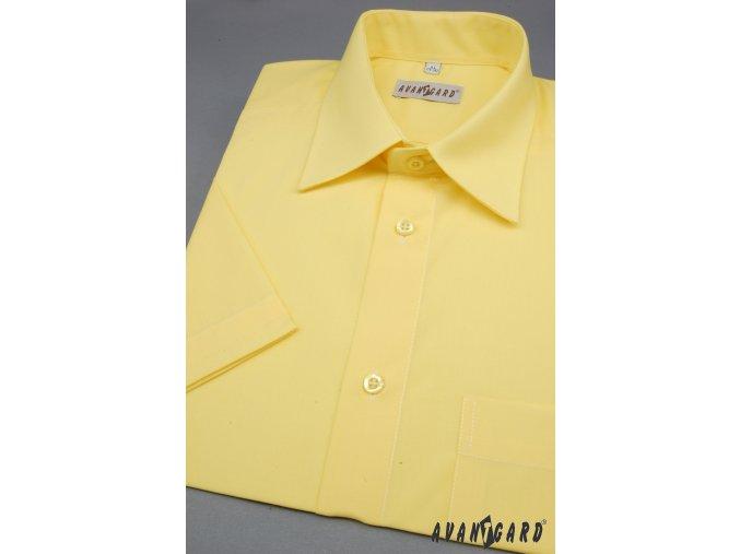 Žlutá pánská košile, kr. rukáv, 351-24 V24_