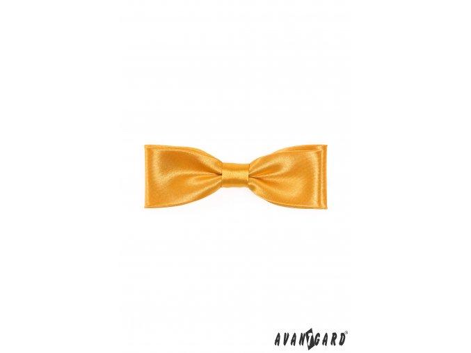 Zlatý motýlek