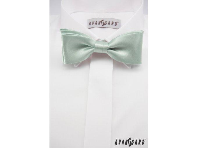 Velmi světle zelený motýlek