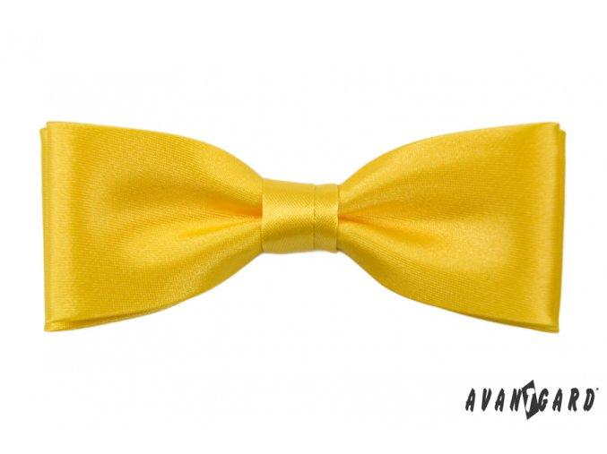 Žlutý motýlek
