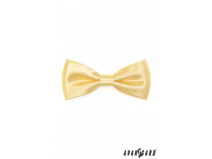 Žlutý jednobarevný motýlek + kapesníček do saka