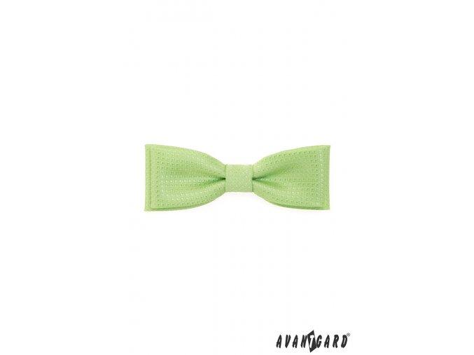 Motýlek KLASIK 576-9319 Zelená (Barva Zelená, Velikost 10 cm, Materiál 100% polyester)