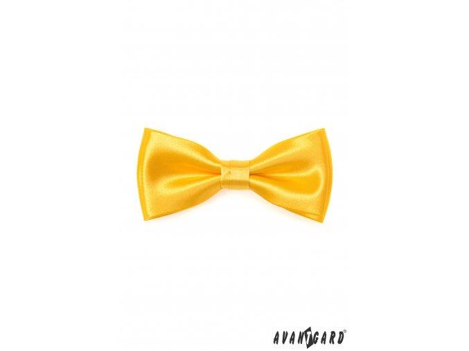 Žlutý lesklý motýlek + kapesníček do saka
