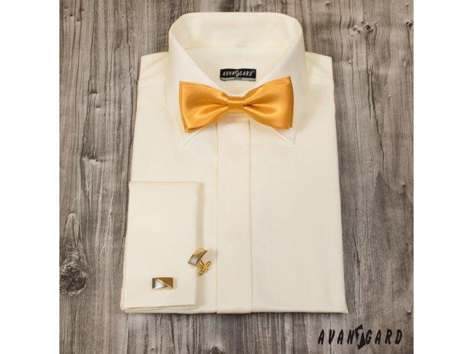 Zlatý předvázaný motýlek + kapesníček do saka