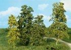 Stromky a keře