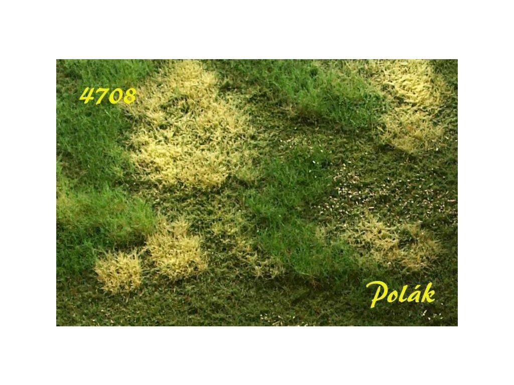 POLÁK 4708