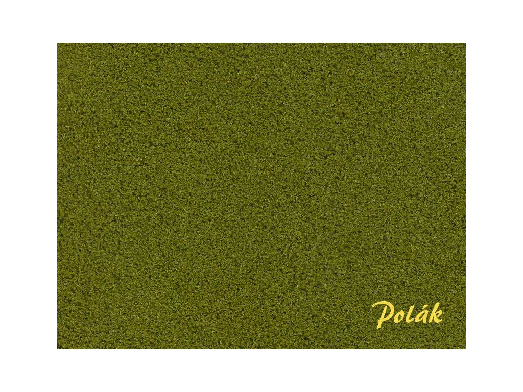 POLÁK 2121