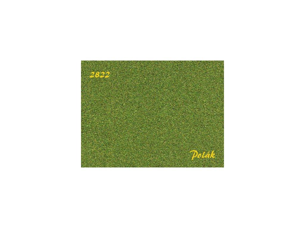 pol2822n