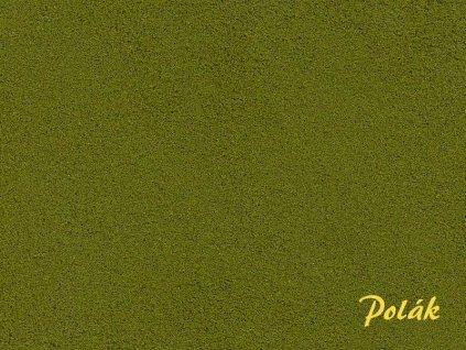 pol2120