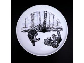 Plochý talíř