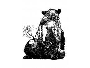 medvedice